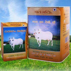 cows-ghee.jpg