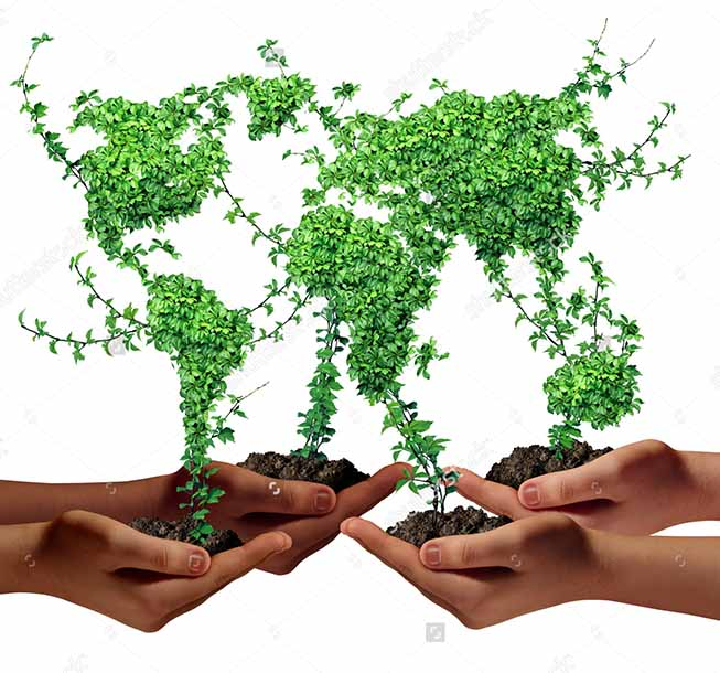 stock-photo-environment-community-and-business-development-concept-as-a-group-of-global-ethnic-people-hands-186255092